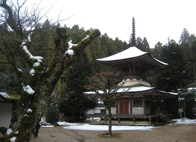 高野山_f0205367_122532.jpg