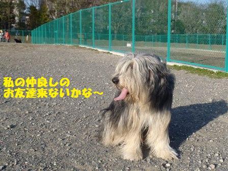f0230380_13503216.jpg