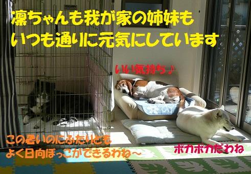 f0121712_0413383.jpg