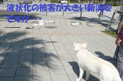 f0121712_0422885.jpg