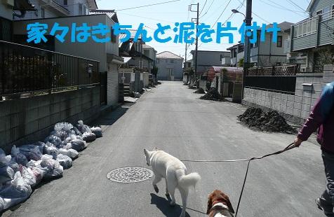 f0121712_042379.jpg