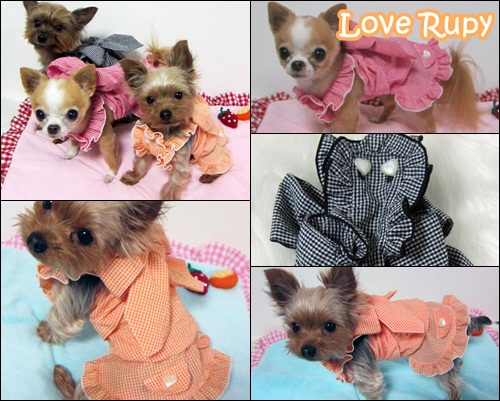 Rupy 2011 Spring Collection先行予約のご案内vol2_b0084929_838312.jpg