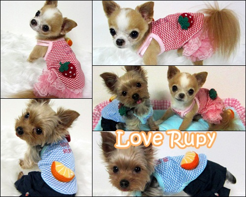 Rupy 2011 Spring Collection先行予約のご案内vol2_b0084929_8501914.jpg