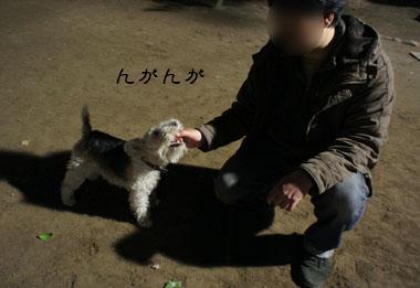 b0091373_025596.jpg