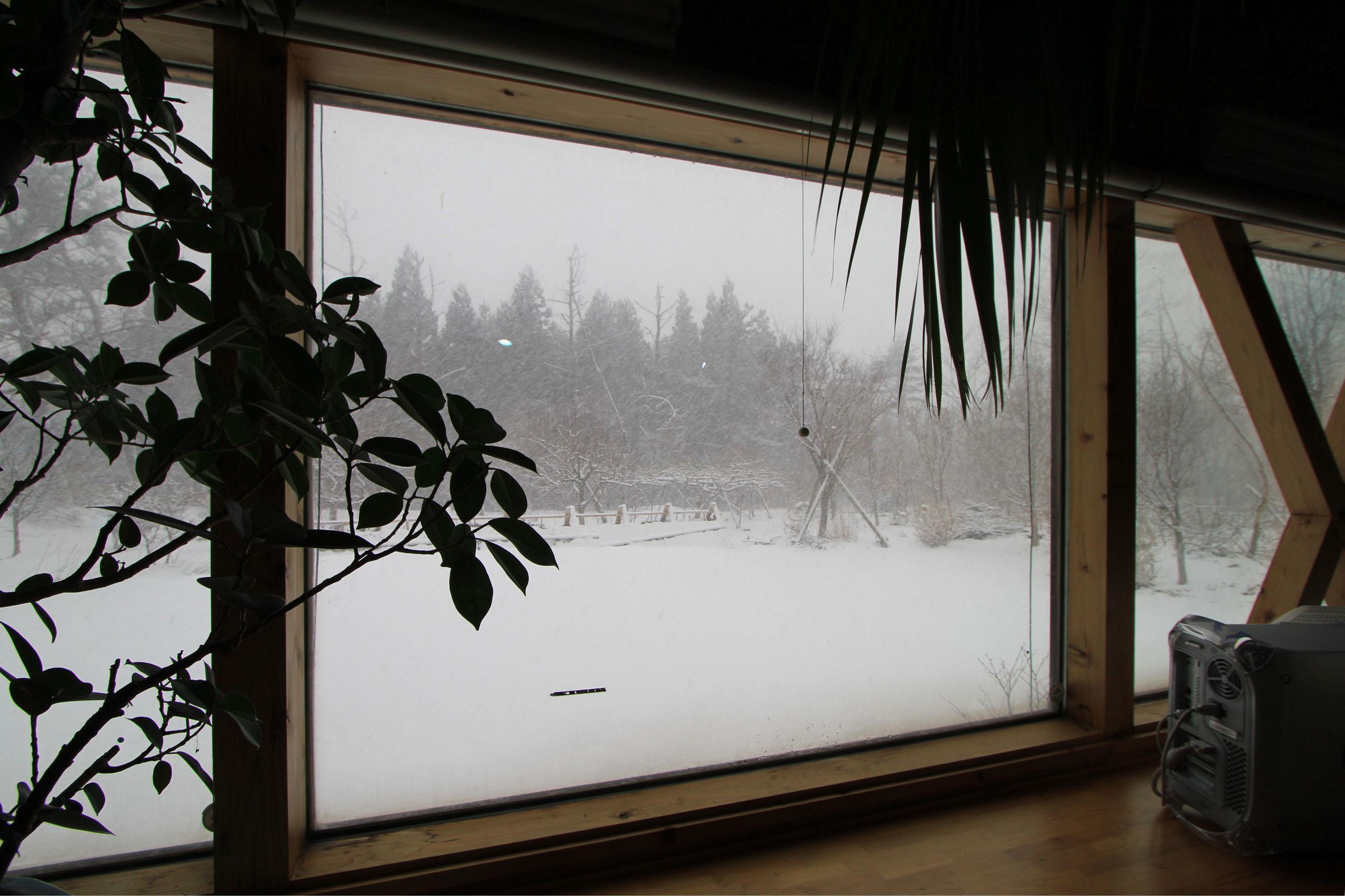 無情の雪_e0054299_14244456.jpg