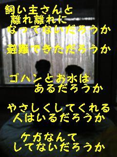 f0148927_9421656.jpg