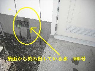f0031037_1659433.jpg