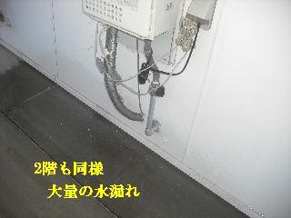 f0031037_173834.jpg
