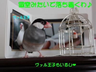 b0158061_21122265.jpg