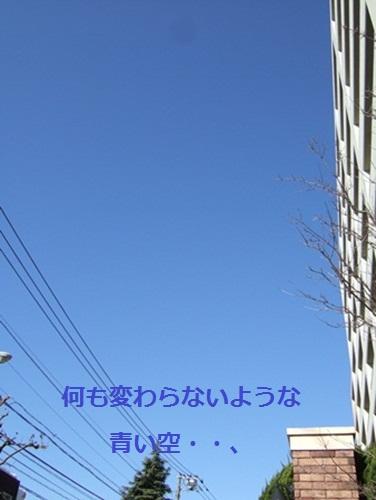 b0182968_13431911.jpg