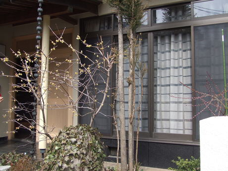 神辺町Sさま邸 シックモダンに変身!_f0196294_20272513.jpg