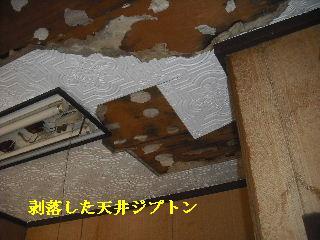 屋根上の作業・・・_f0031037_2062584.jpg