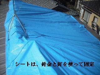 屋根上の作業・・・_f0031037_208571.jpg