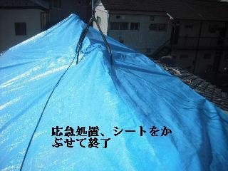 屋根上の作業・・・_f0031037_2093787.jpg