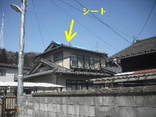 屋根上の作業・・・_f0031037_2095158.jpg