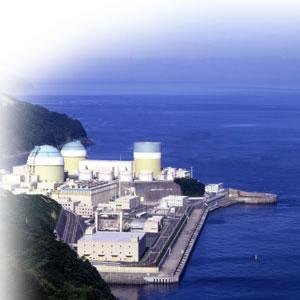 沸騰水型原子炉  Boiling Water Reactor、BWR_e0203309_1985313.jpg