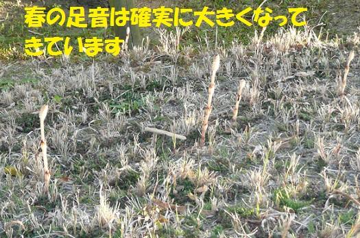 f0121712_23544026.jpg