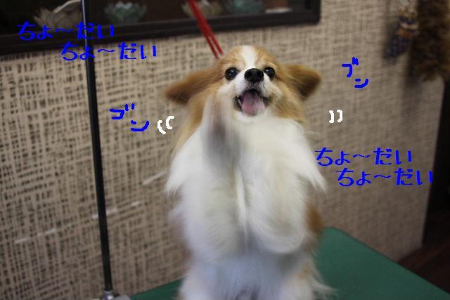 素晴らしき日本人!!_b0130018_1354278.jpg