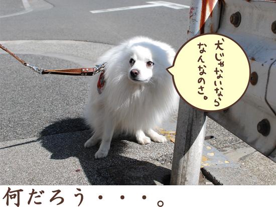 d0212419_065980.jpg