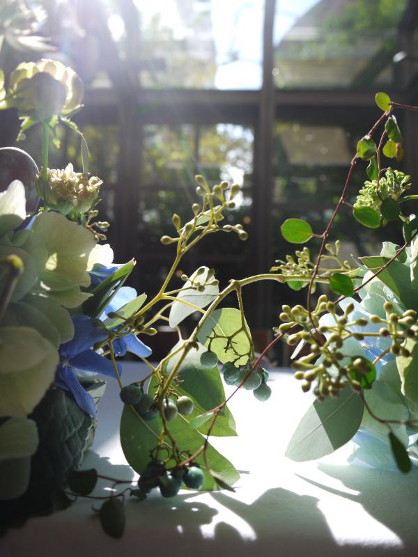 青い花と実もの アンカシェット様へ_a0042928_164829100.jpg