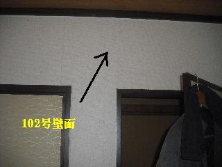 賃貸・・巡回点検_f0031037_1510267.jpg