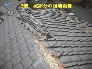 瓦の緊急・・・雨対策_f0031037_1515144.jpg