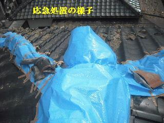 瓦の緊急・・・雨対策_f0031037_1524317.jpg