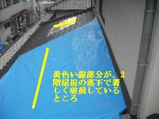 瓦の緊急・・・雨対策_f0031037_1531479.jpg