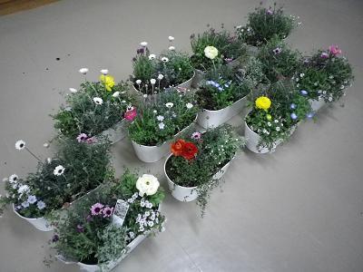 3月の寄せ植え教室・終了しました!感謝します。_e0086738_19142663.jpg