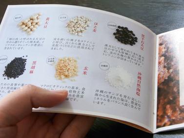 沖縄薬膳味噌パンフレット_c0191542_13261687.jpg