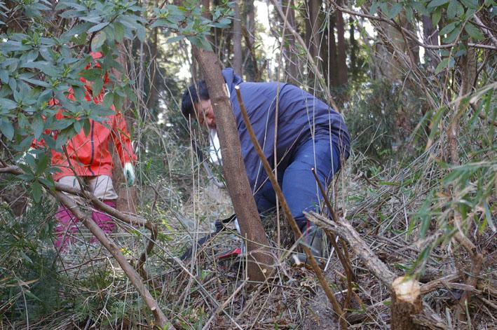 第3回六国見山森林公園の手入れに強力な助っ人登場!_c0014967_14365310.jpg