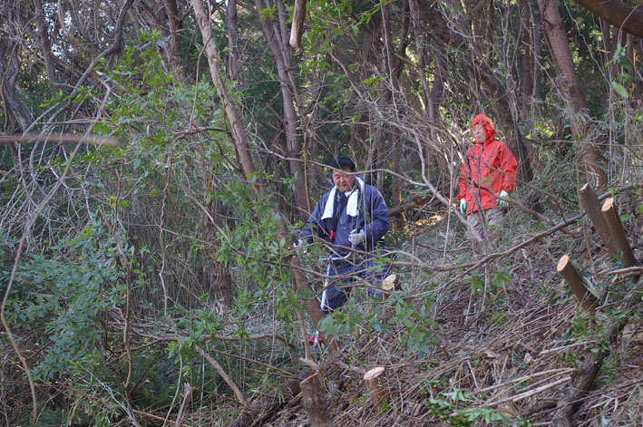 第3回六国見山森林公園の手入れに強力な助っ人登場!_c0014967_14374312.jpg