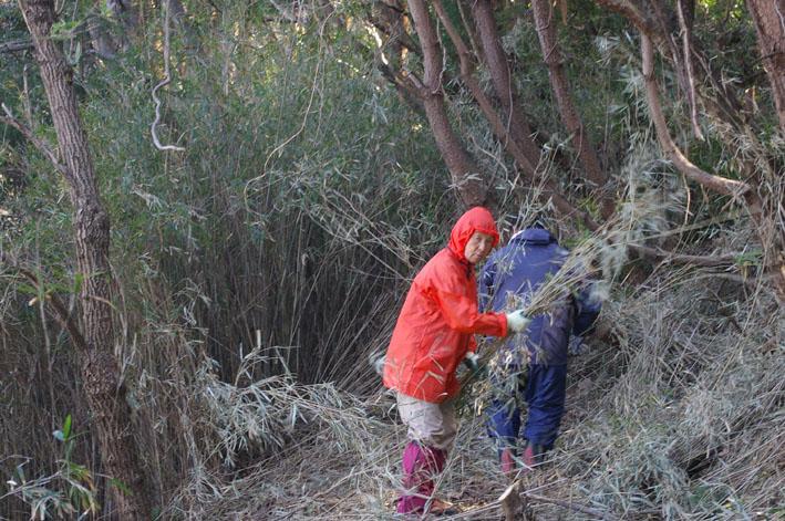 第3回六国見山森林公園の手入れに強力な助っ人登場!_c0014967_14421095.jpg