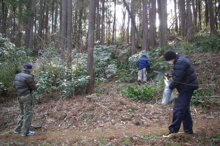 第3回六国見山森林公園の手入れに強力な助っ人登場!_c0014967_14513775.jpg