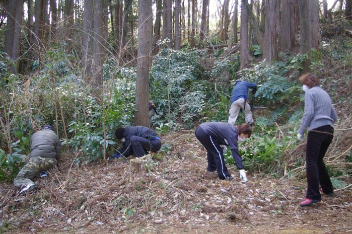 第3回六国見山森林公園の手入れに強力な助っ人登場!_c0014967_1452159.jpg