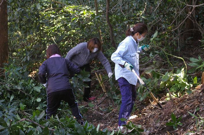 第3回六国見山森林公園の手入れに強力な助っ人登場!_c0014967_14534451.jpg