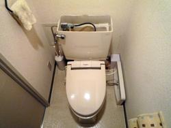 トイレの水の流し方_d0126473_9492283.jpg
