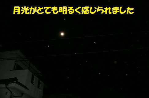 f0121712_0253680.jpg