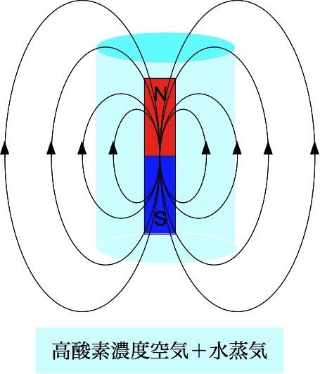 「プロジェクト・オーロラ」:ミニ地球による遮蔽、「ミニ地球作戦」_e0171614_1393212.jpg