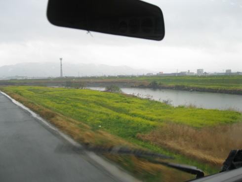 福岡、柳川、大和「WAM」へ~~_a0125419_15471584.jpg