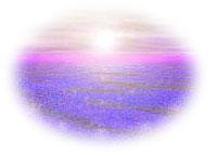 c0193234_14123959.jpg