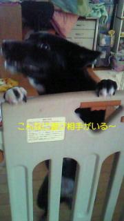 f0192863_16101047.jpg