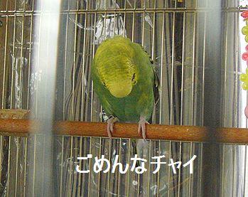 f0196665_01883.jpg