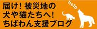 届け!被災地の犬や猫たちへ!(ちばわん支援ブログ)<br />
