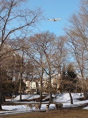 2011年3月23日(水):明日は雪!?_e0062415_19403266.jpg