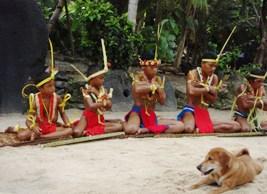 トルー村の踊り上げ_a0043520_8455477.jpg