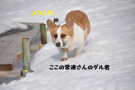 f0212597_17281290.jpg