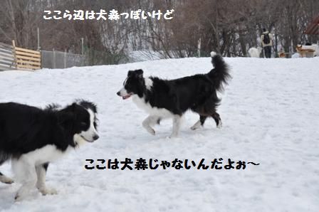 f0212597_1728425.jpg