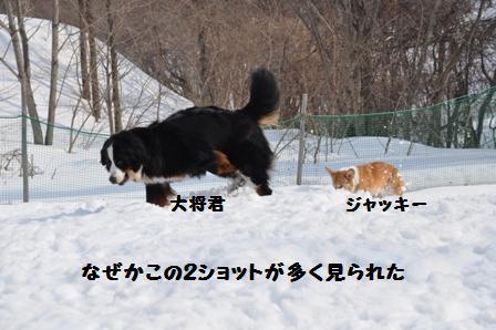 f0212597_1733857.jpg