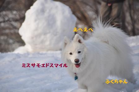 f0212597_1734569.jpg